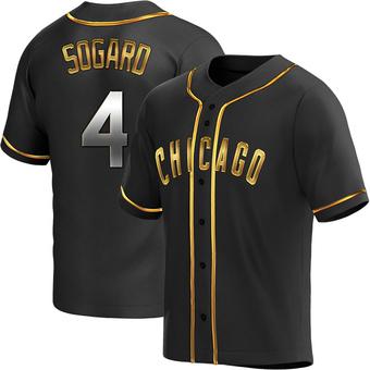 Men's Eric Sogard Chicago Black Golden Replica Alternate Baseball Jersey (Unsigned No Brands/Logos)