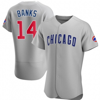 Men's Ernie Banks Chicago Gray Authentic Road Baseball Jersey (Unsigned No Brands/Logos)