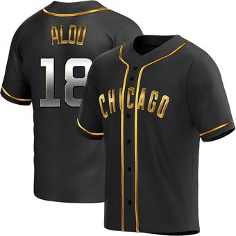 Men's Moises Alou Chicago Black Golden Replica Alternate Baseball Jersey (Unsigned No Brands/Logos)