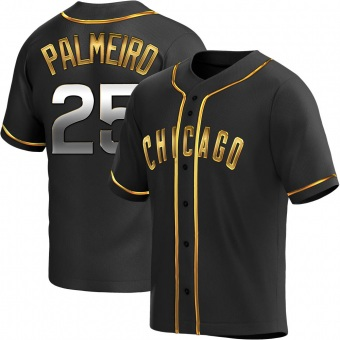 Men's Rafael Palmeiro Chicago Black Golden Replica Alternate Baseball Jersey (Unsigned No Brands/Logos)