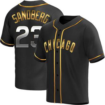 Men's Ryne Sandberg Chicago Black Golden Replica Alternate Baseball Jersey (Unsigned No Brands/Logos)