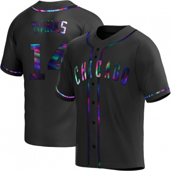 Youth Ernie Banks Chicago Black Holographic Replica Alternate Baseball Jersey (Unsigned No Brands/Logos)