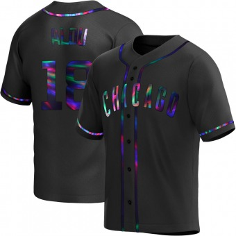 Youth Moises Alou Chicago Black Holographic Replica Alternate Baseball Jersey (Unsigned No Brands/Logos)