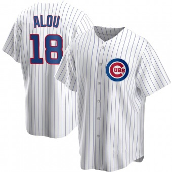 Youth Moises Alou Chicago White Replica Home Baseball Jersey (Unsigned No Brands/Logos)
