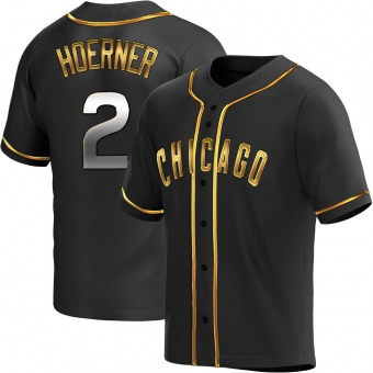 Youth Nico Hoerner Chicago Black Golden Replica Alternate Baseball Jersey (Unsigned No Brands/Logos)