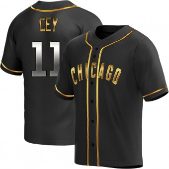 Youth Ron Cey Chicago Black Golden Replica Alternate Baseball Jersey (Unsigned No Brands/Logos)